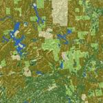 Woodlot Ownership and Forest Cover in Maine