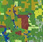 Woodlot Ownership in Maine