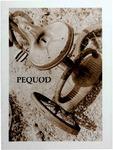 Pequod (Spring 1994)