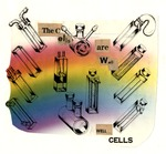 15. The Cells Are Well Collage
